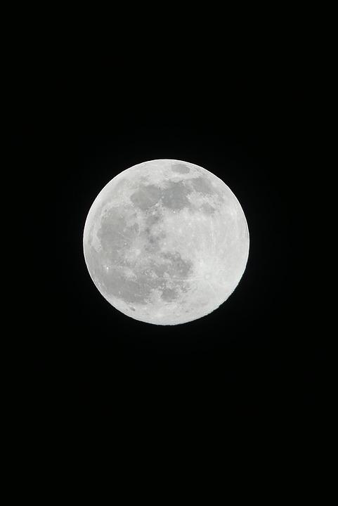 Gambar Bulan Hitam Putih : gambar, bulan, hitam, putih, Bulan, Hitam, Purnama, Gratis, Pixabay