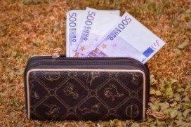 Geldbeutel, Geldbörse, Scheine+ umschulden.