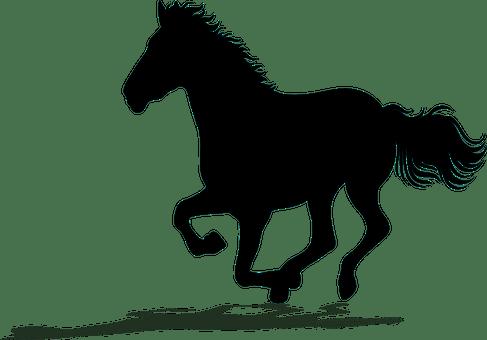馬, 実行している, シルエット, 自由, 実行, 自然, 動物, マスタング