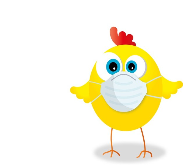 Chicken Mask Corona - Free image on Pixabay