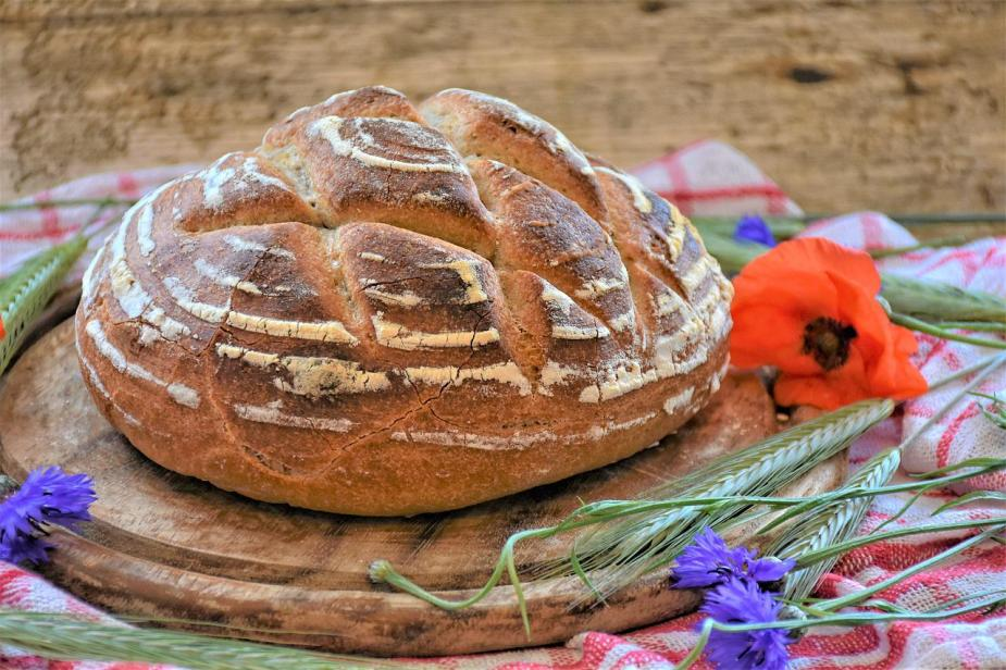 making your own sourdough