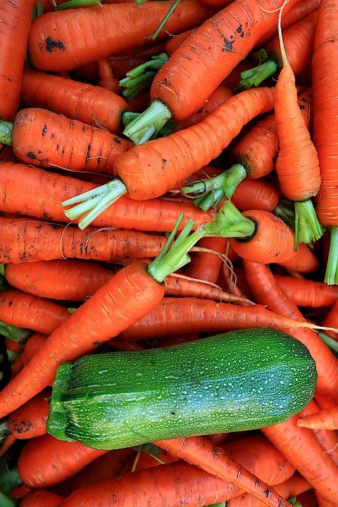 Gambar Sayuran Wortel : gambar, sayuran, wortel, Sayuran, Wortel, Zucchini, Gratis, Pixabay