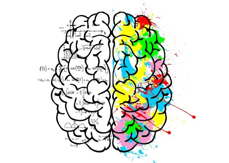 Brain, Left, Logic, Science, Mathematics, Right