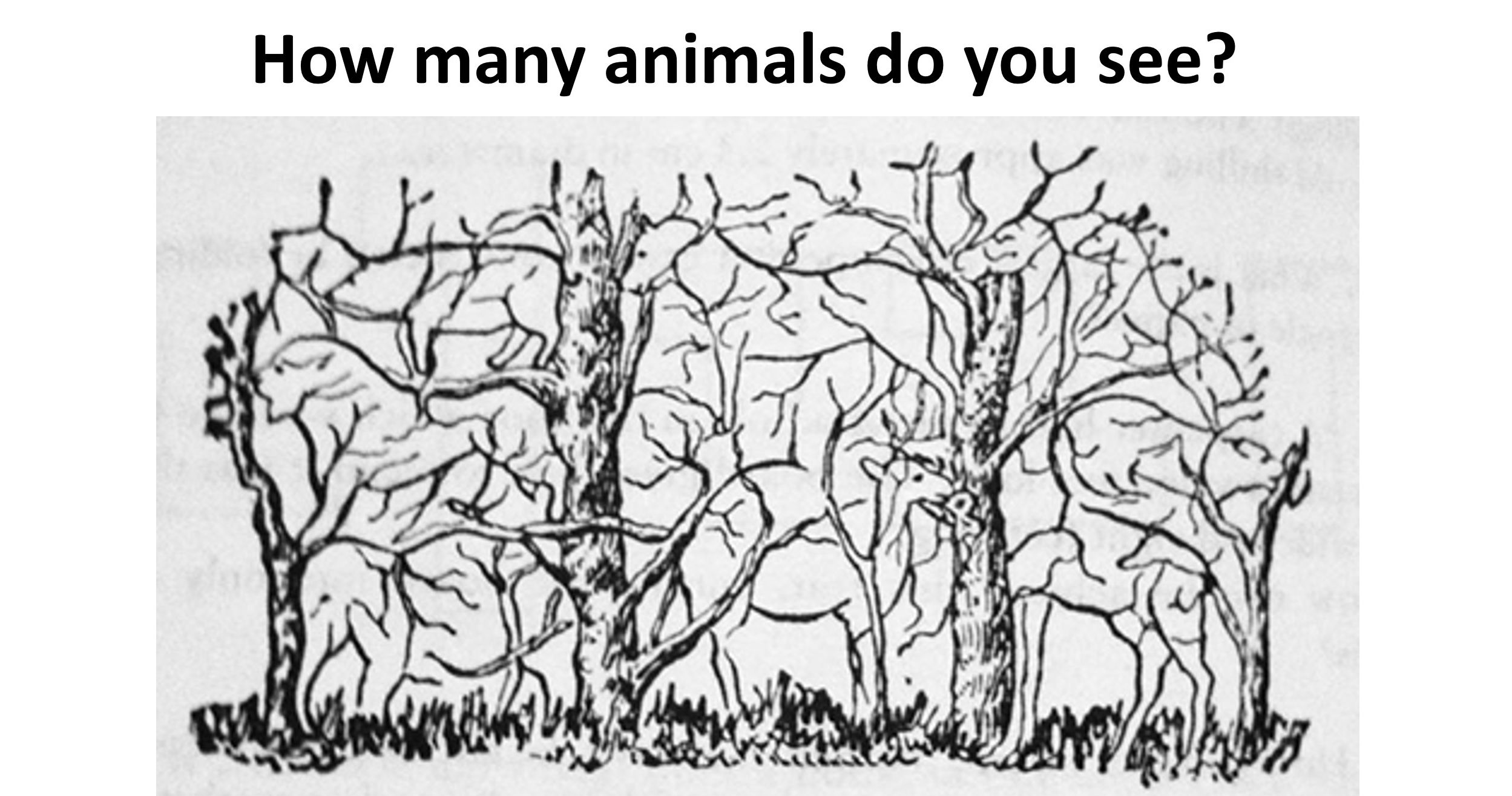 The Number Of Hidden Objects You See Can Determine If You