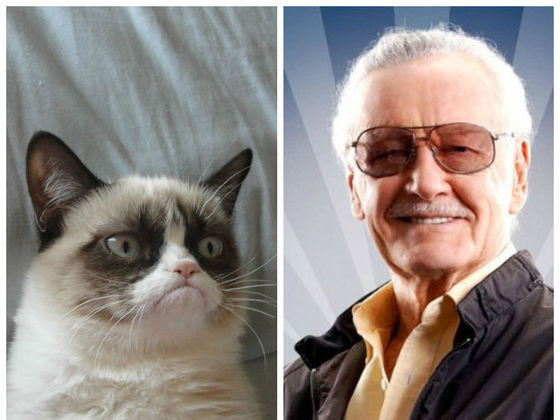 Stan Lee Met Grumpy Cat And The Curmudgeonly Results Are
