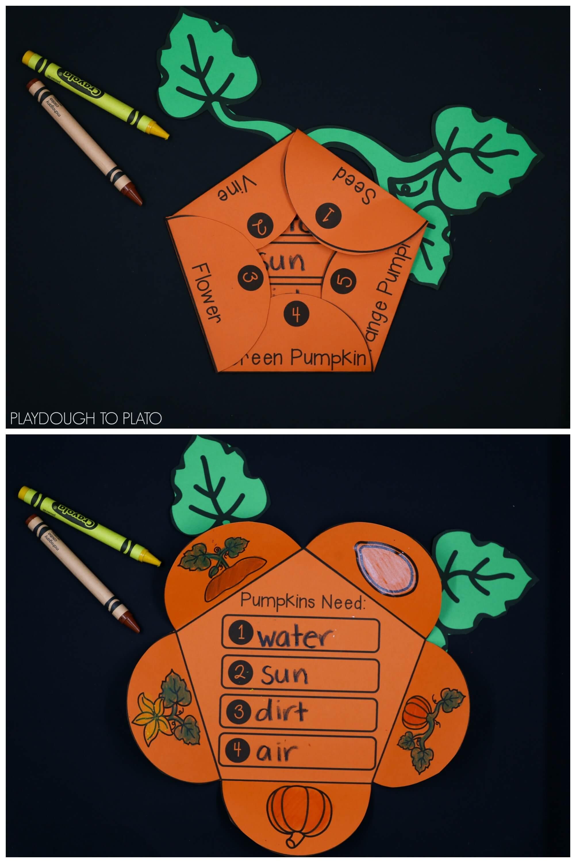 Pumpkin Activity Pack
