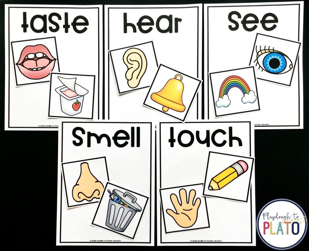 5 Senses Sorting Mat