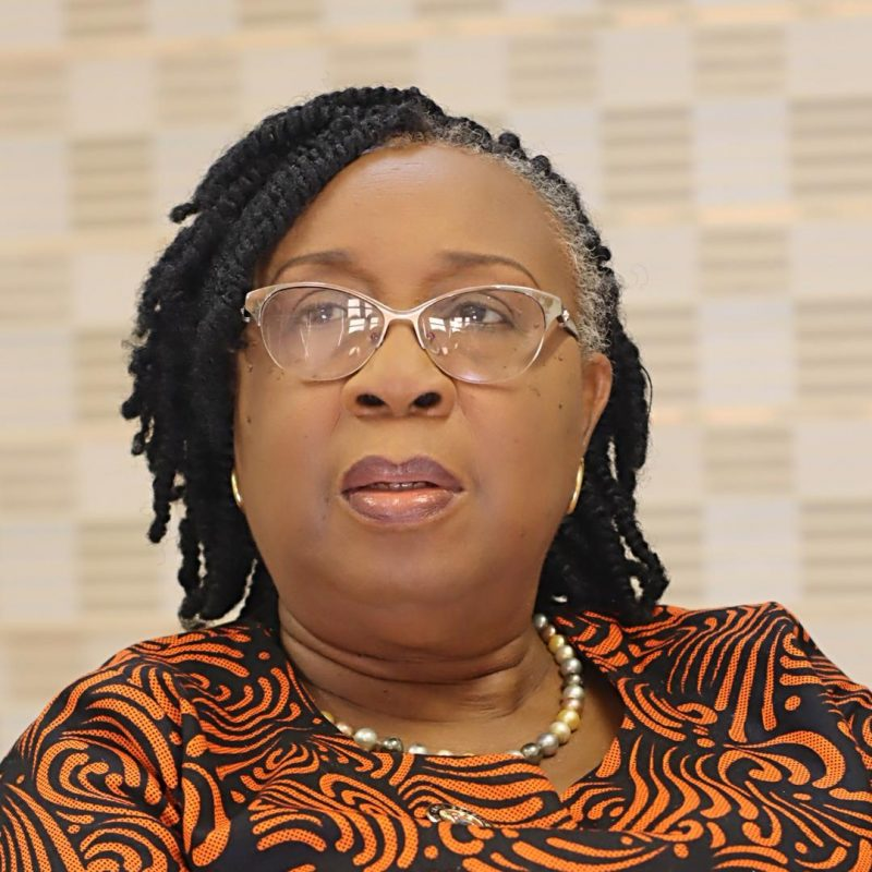 Lagos introduces Volunteer Mentorship Programme