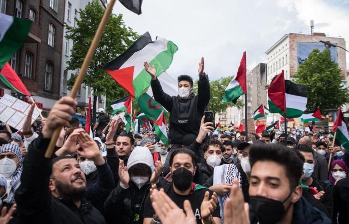 Pro Palestine Protesters