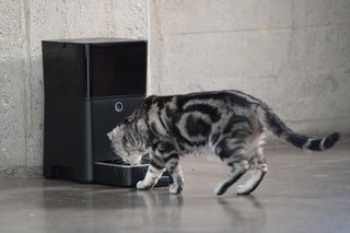 15 incredible high-tech gadgets for your pets and yourself image 3