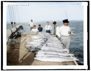 Colourised photos from history image 42