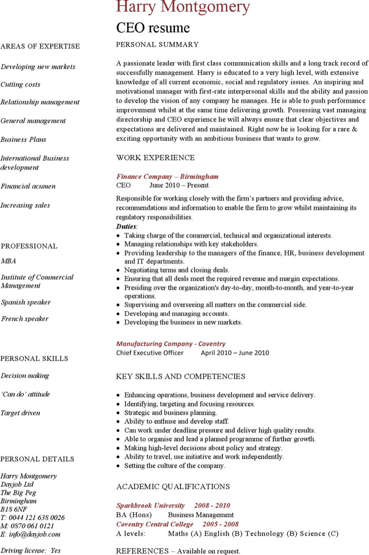 Ceo Resume Template 9 Ceo Resume Template Free Download