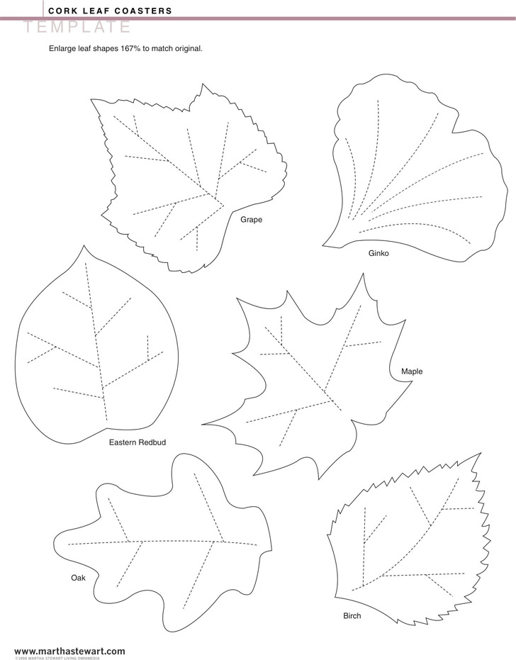 3+ Leaf Template Free Download