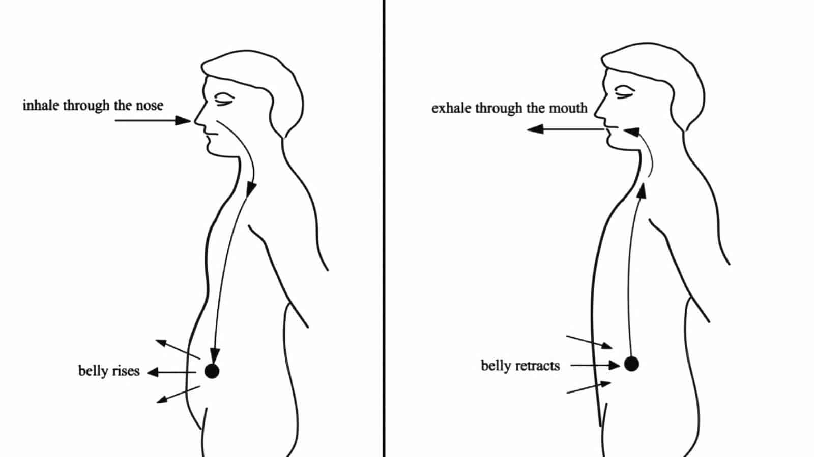 Science Explains What Happens To Your Body When You