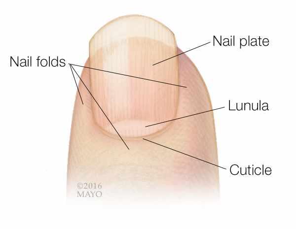 Nail Polish Remover On Wood Mayo