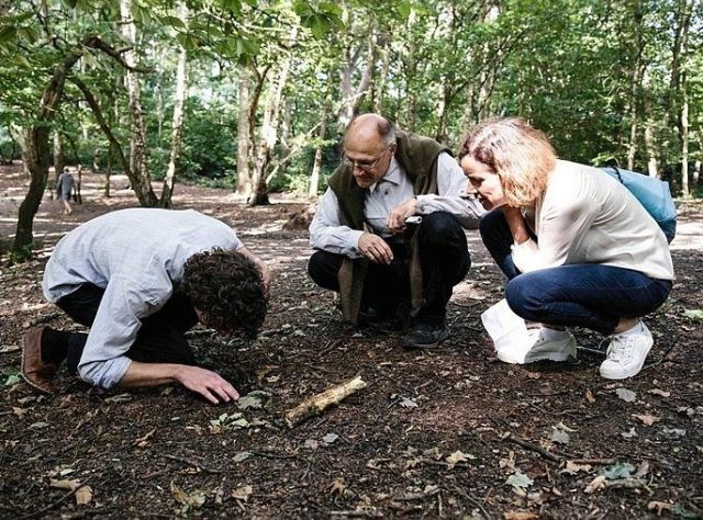 """Sheldrake together with DER SPIEGEL journalists Johann Grolle and Rafaela von Bredow in London: """"I suddenly discovered that this garden has a gate through which I can enter a strange and wonderful forest."""""""