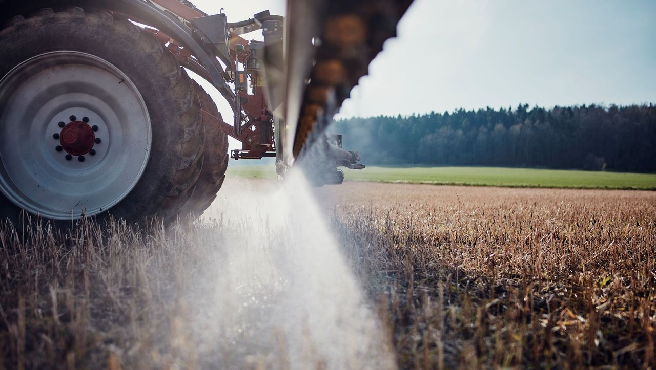 Monsanto Papers Reveal Company Covered Up Cancer Concerns - DER SPIEGEL - International