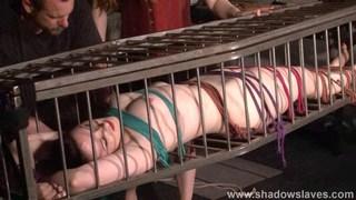 Caged American fetish model Caroline Pierce Preview Image