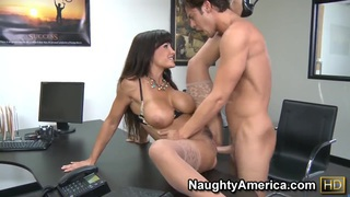 Lisa Ann fucked by Seth Gamble in her office Preview Image