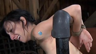 Gagged cutie with clamped nipples acquires fun Preview Image