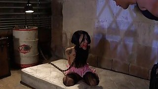 Debt collector anal bangs his slave Preview Image