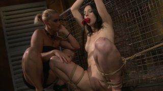 Cock hardening BDSM scene of sultry brunette Melyssa Preview Image