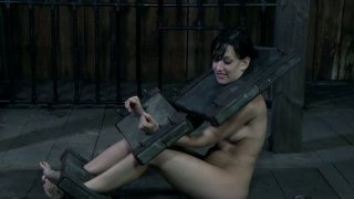 Sweaty slave Elise Graves is_in stocks_in the dirty place Preview Image