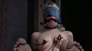 Sophie Ryan is filming in a hardcore BDSM video performing professional skills Preview Image