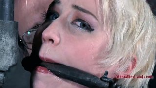 Niki Nymph gets whipped_brutally in_a hardcore BDSM video Preview Image