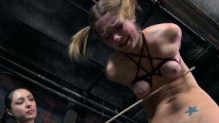 All flushing blondie with pigtails_gets treated_bad in BDSM session Preview Image