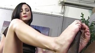 Veruca James Porn Videos Preview Image