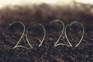 2020 New Year And Farm Growth Concept