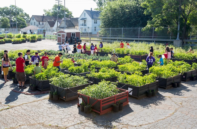 GM Reuses Factory Crates To Build A Community Garden In