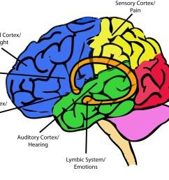 psychology today [ 2334 x 1696 Pixel ]