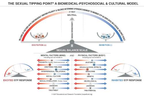 small resolution of understanding sexual balance latest update to the stp model psychology today