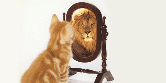 Výsledek obrázku pro self image