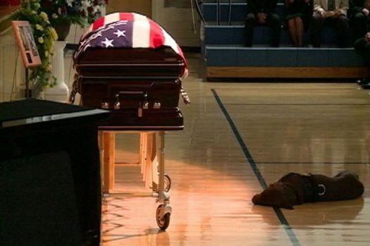 dog canine emotion grief mourn death Hawkeye Jon Tumilson