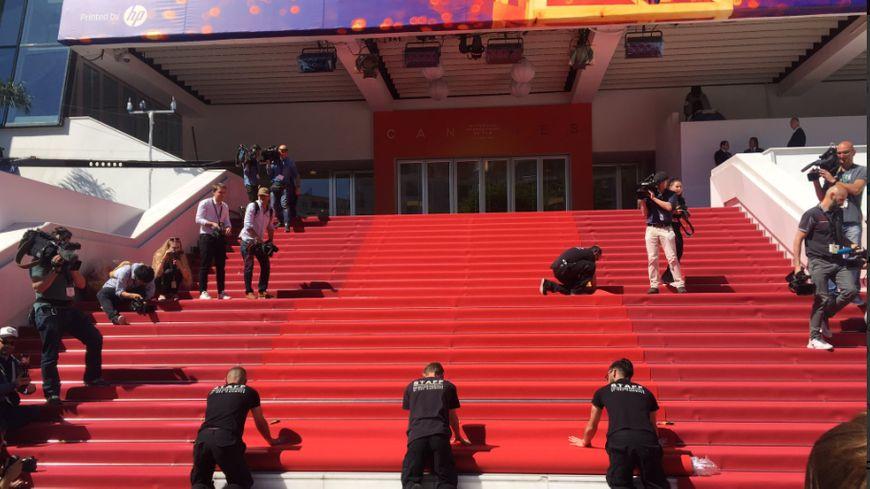 video le tapis rouge du 72e festival