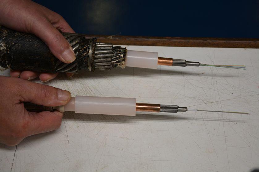 Un câble sous marin peut être protégé par des brins d'acier (haut) ou posé à nu (bas) sur le fond de l'océan. Sur la droite, on distingue les brins de fibre optique qui font le diamètre d'un cheveu.