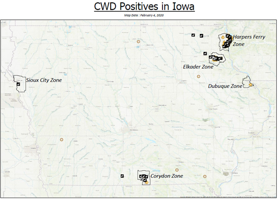 Tests show record number of Iowa deer testing positive for