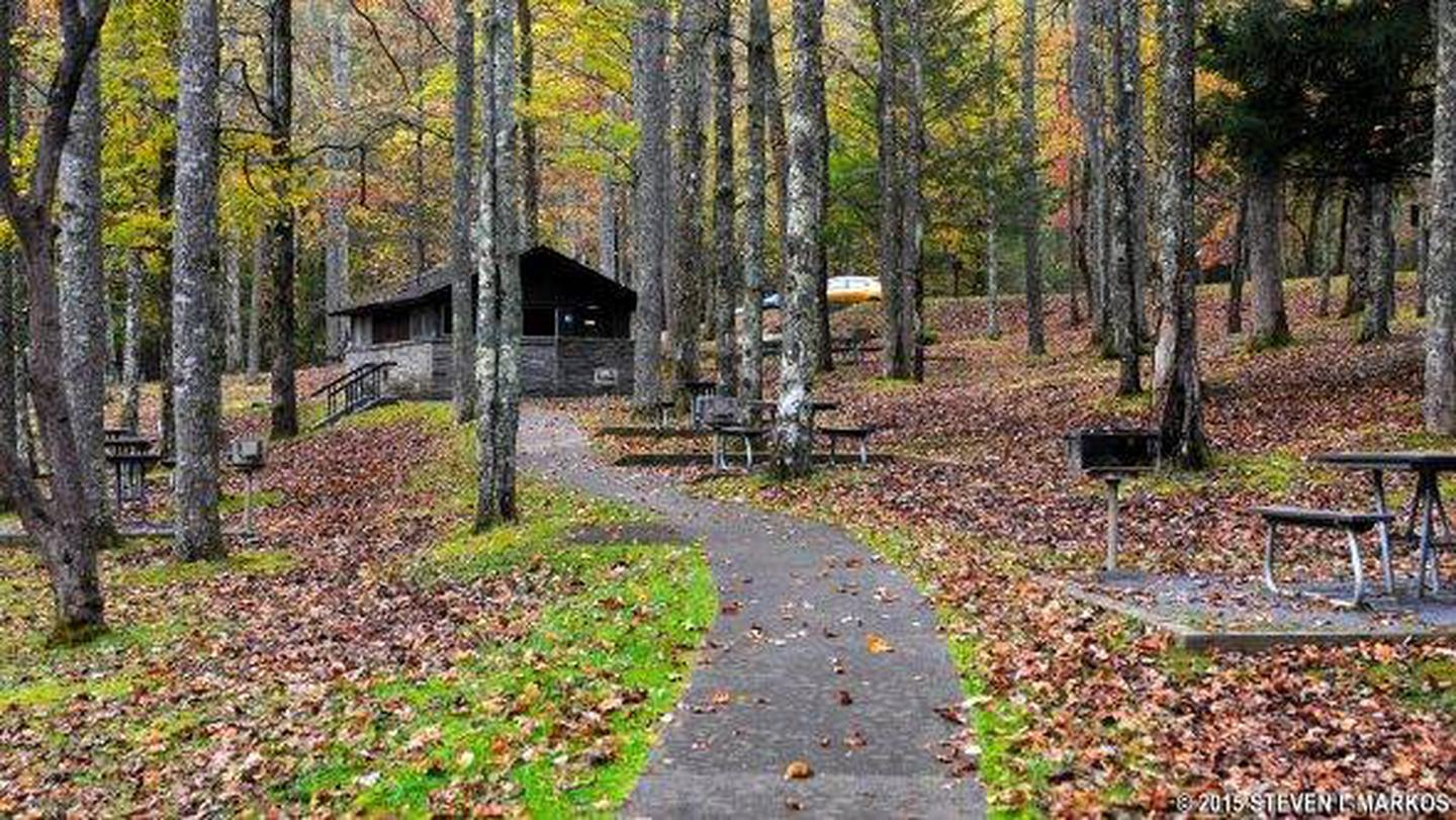 Just outside the campground's privacy gate and across a small country lane. Cosby Campground Great Smoky Mountains National Park Recreation Gov
