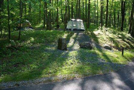 Read reviews, amenities, activities, and view photos and maps. Cosby Campground Great Smoky Mountains National Park Recreation Gov