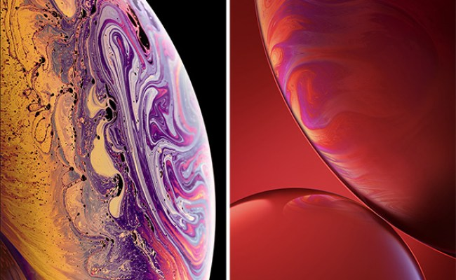 Iphone Xs Max Live Wallpaper Download Free Download