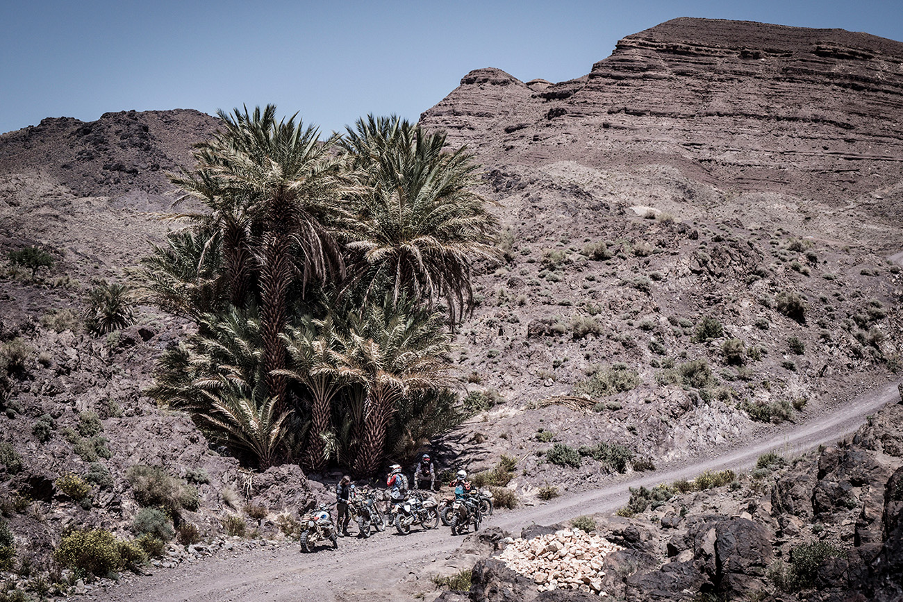 Fuel Motorcycles Scram Africa 2019