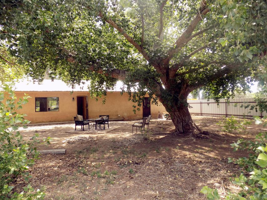 Come check out this 3-bedroom, 2-bathroom home located in secluded Peralta. At just under 1 acre, there is plenty of space for all your needs.2 car carport partially enclosed. Rear yard completely fenced, safe for pets or gardening. Well water, swamp cooler. Entire house floor tiled professionally. Kitchen remodeled with new cabinets.Large cotton wood trees that give lots of shade. Home is located close to schools, grocery marts, convenience stores and much more! This home has recently been updated and has a lot more potential that can be added. Such a great opportunity at a fantastic price - Seller will pay up to $1500 towards buyers closing costs,prepaids or lender required fees.come see for yourself today.