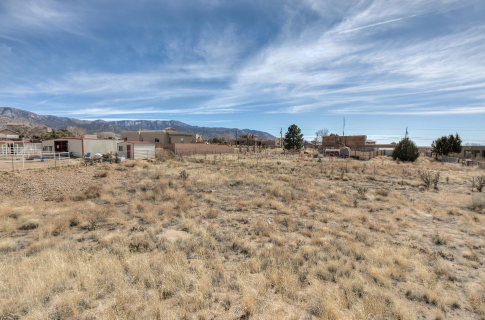 ''Are looking for a home to make you own or a renovation ready site in one of the most popular areas of Albuquerque?!?! Look no further! Located in the far NE heights on an oversized lot, 12224 Elena offers breathtaking views of the Sandia Mountains as well as the city of Albuquerque. The home sits on 1.34 acres and is ready for someone to come and design all the final touches. All the utilities are on site, the property has a shared well, septic system and electricity has been drawn to the home. Inside the home consists of a 2 car garage on the street level, and an additional 3800 square feet below grade. Built with block and concrete on the exterior (as well as some of the interior) walls and floors this floor plan would make an awesome project!
