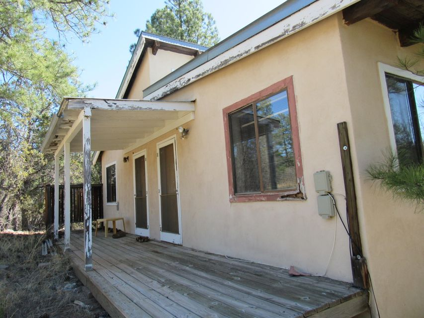 Cabin duplex getaway or rental opportunity! This one borders national forest .