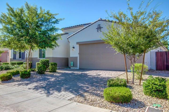 15664 W ASHLAND Avenue, Goodyear, AZ 85395