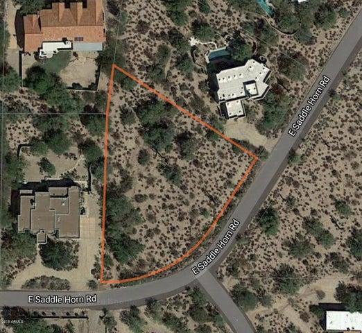 8110 E SADDLE HORN Road, 78, Scottsdale, AZ 85255