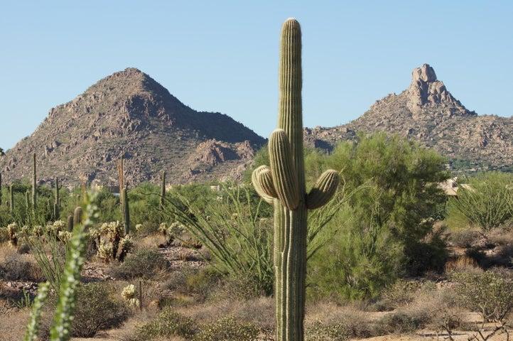 9736 E VEREDA SOLANA Drive, 3, Scottsdale, AZ 85255